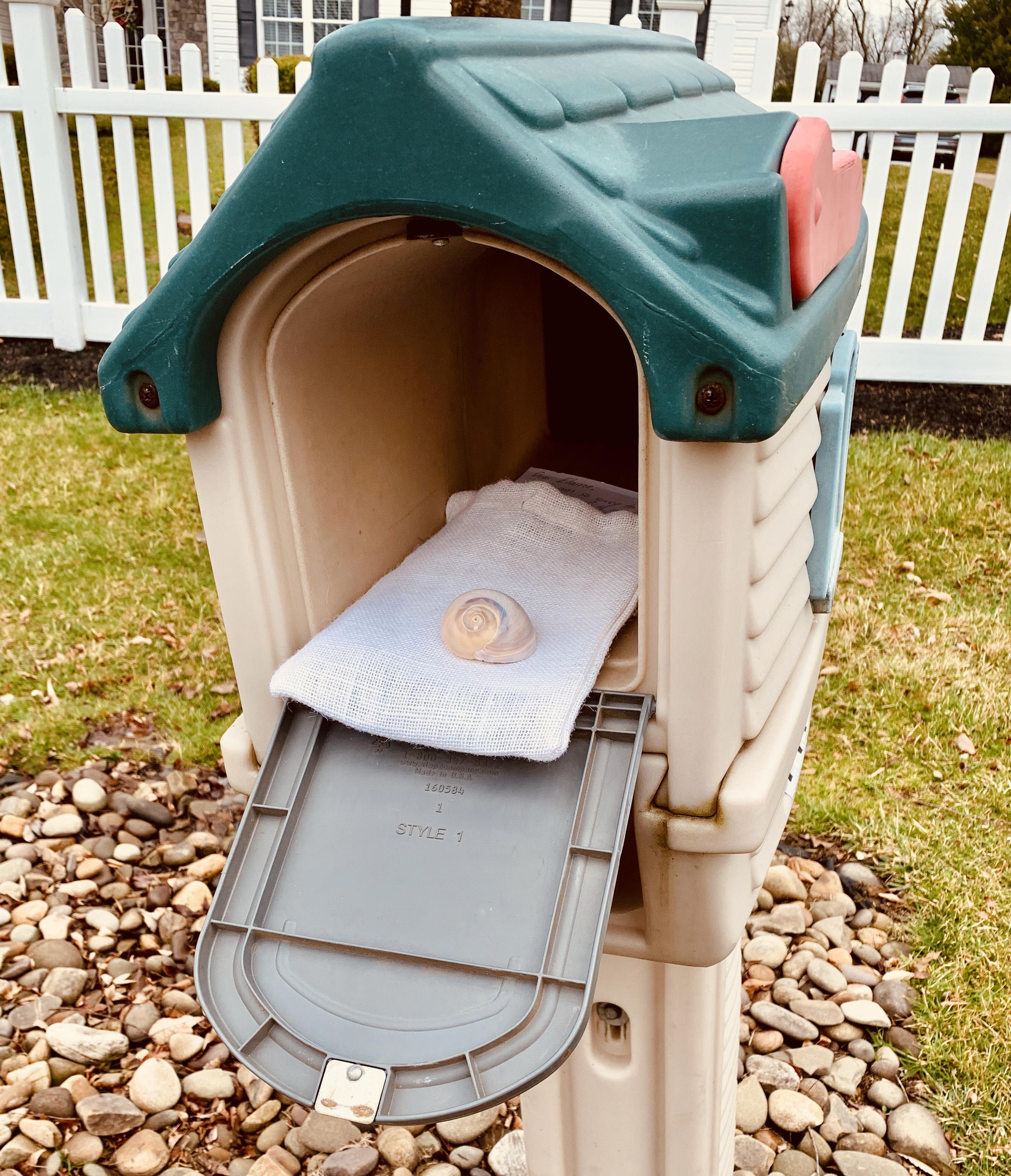 mailbox Peach
